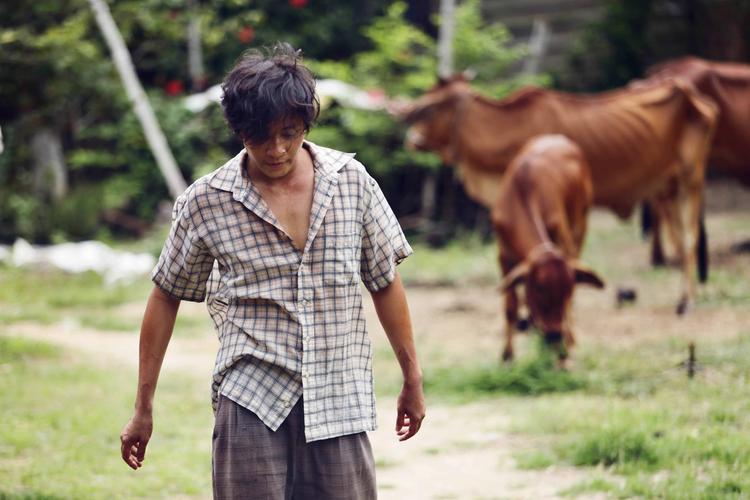 Lương Mạnh Hải than trời vì bị đạo diễn Vũ Ngọc Đãng bắt ăn gián trong phim mới