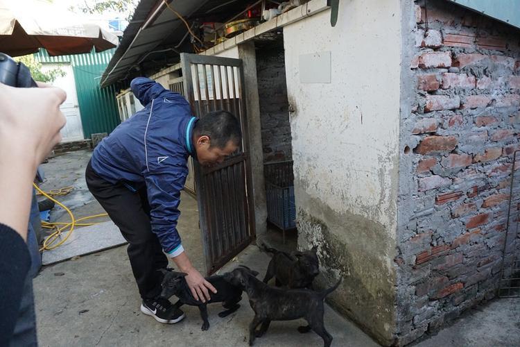 Chó Phú Quốc nhanh nhẹn, tinh nhanh và có bản năng săn mồi tốt, không những thế rất trung thành với chủ.