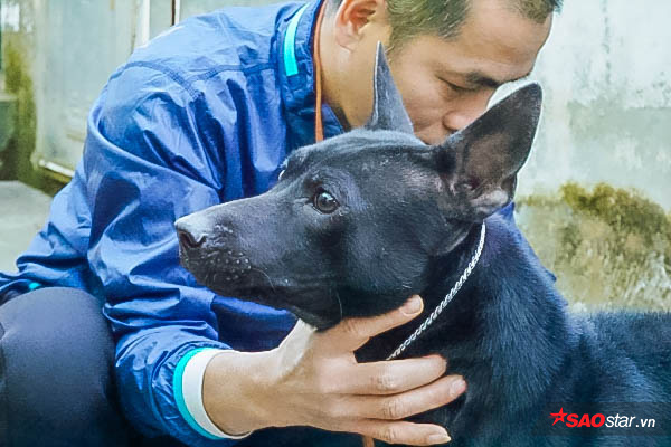 Các con chó đều được anh Thắng đặt tên như Xoài, Bò, con 30. Trong đó, con Xoày là đầu lĩnh của trại khi đi thi đạt nhiều giải cao quý về chó Phú Quốc là và một trong những con chó mà anh rất yêu quý. Cách đây 7 năm, anh mua con Xoài với giá gần 50 triệu đồng khi nó còn là một chú chó con. Sau đó, nhiều người trả giá hơn 120 triệu đồng nhưng anh không bán.