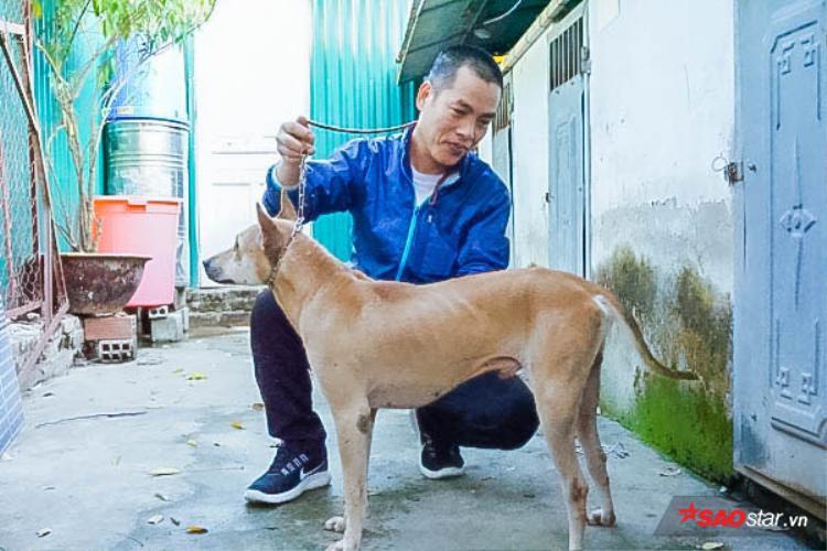 Anh Thắng đang tập luyện cách đứng, sải chân của chó để đi thi.