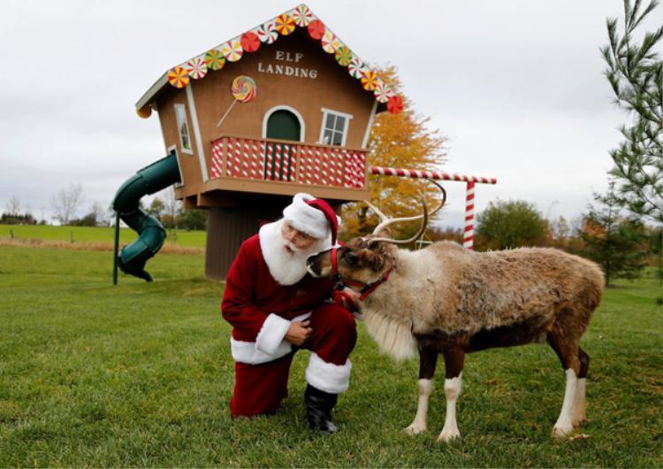 Các học viên cũng được học cách chơi đùa với tuần lộc - linh vật gắn liền với hình tượng ông già Noel. Sau mỗi khóa học, mỗi người còn được may một bộ trang phục ông già Noel cho riêng mình.