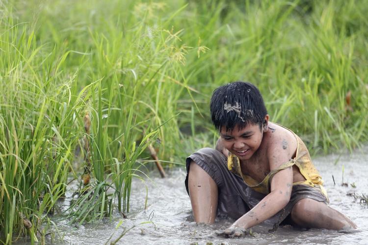 Khi gia đình có nhiều cách biểu đạt trong phim Việt 2017