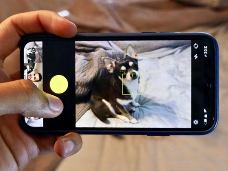 5 ứng dụng tuyệt vời chỉ có trên iPhone khiến người dùng Android thèm nhỏ dãi
