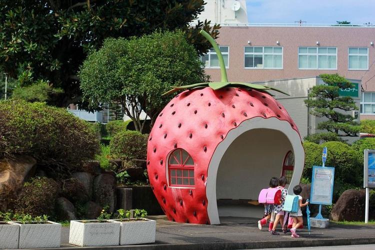 Năm 2005, Konagaisáp nhập vào thành phố lớn Isahaya, điều này đồng nghĩa với việc lượngkhách du lịch tới khám phá các bến xe buýt trái cây cũng gia tăng đáng kể.