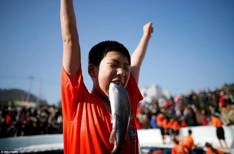 Phản ứng thú vị của một cậu bé khi bắt được cá hồi bằng đôi tay trần của mình trong sự kiện quảng bá lễ hội băng ở Hwacheon.