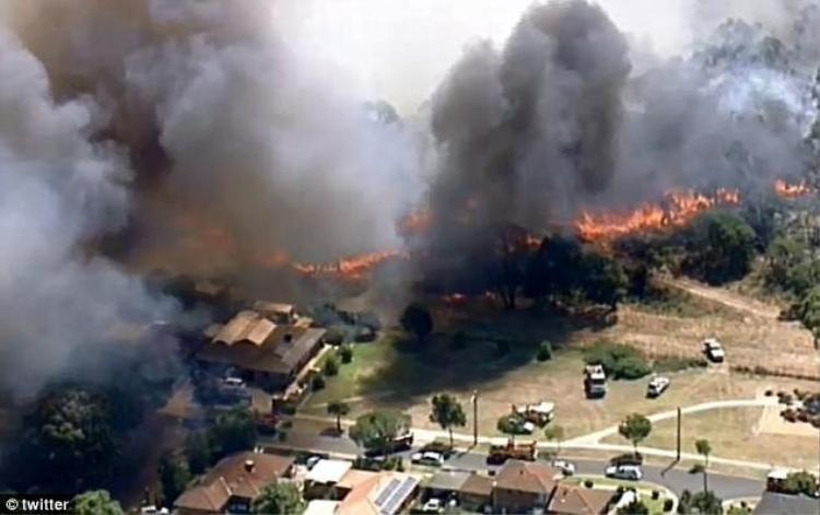 Cảnh báo về hỏa hoạn cũng được ban hành trên khắp khu vực thành phố Sydney. Chỉ riêng trong ngày 7/1, 51 vụ cháy đã xảy ra ở Sydney.