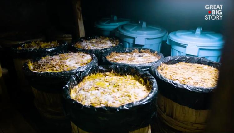 Câu chuyện thú vị về món tempura lá phong cầu kỳ, muốn ăn phải chuẩn bị nguyên liệu trước cả năm trời