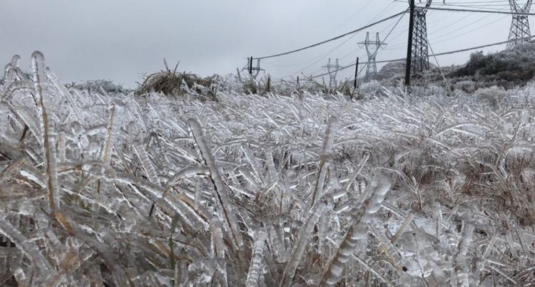 Theo SCMP,đợt bão tuyết thứ nhất quét qua Trung Quốc vào tuần trước đã khiến 21 người thiệt mạng, 2,3 triệu người bị ảnh hưởng, hơn 3.700 người phải bỏ nhà cửa vì 700 ngôi nhà sập và khoảng 2.800 ngôi nhà khác bị hư hỏng nặng do tuyết. Bên cạnh đó, hàng trăm nghìn ha cây trồng cũng bị ảnh hưởng, gây thiệt hại về kinh tế lên tới 847 triệu USD.
