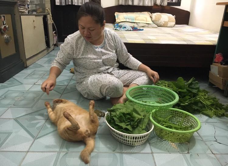 """""""Chồng con có thể nhịn đói nhưng mèo thì không"""" - châm ngôn của mẹ bạn Kiều Thị Ngọc Hà."""