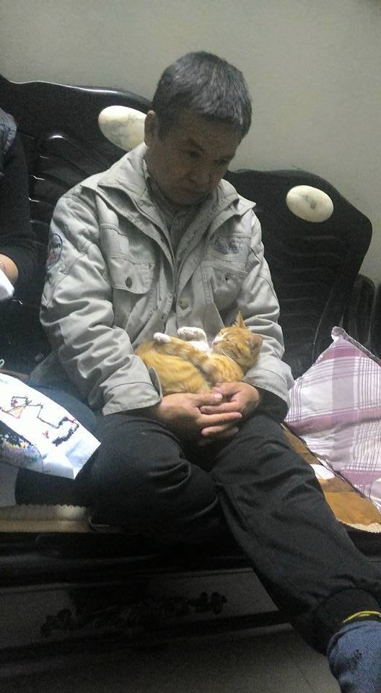 """""""Nuôi mèo bẩn lắm, suốt ngày dọn cho nó, ném nó đi, à mà đã cho nó ăn chưa thế bà Chi?"""" - đó là lời nói của bố bạn Thông Huy."""