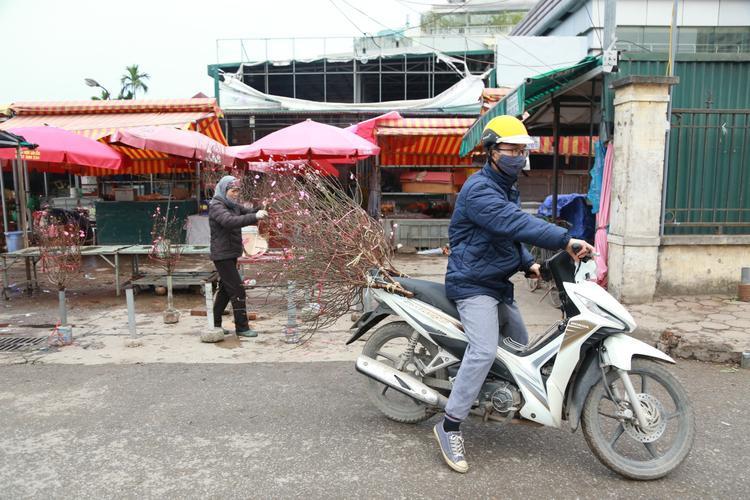 Một thanh niên mua cành đào cho công ty, cảm giác như Tết đang cận kề.