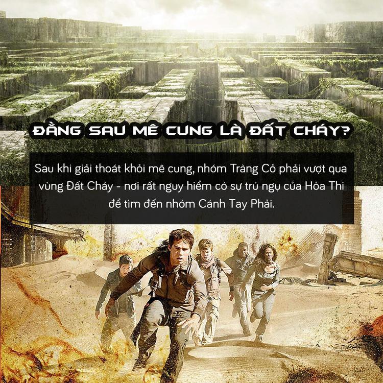 Trước khi xem Maze Runner 3, hãy cùng nhìn lại hành trình của Thomas và những người bạn