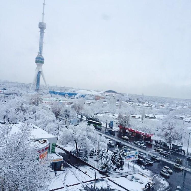 Đất nước Uzbekistan bị tuyết bao phủ trắng xóa trong mùa đông.