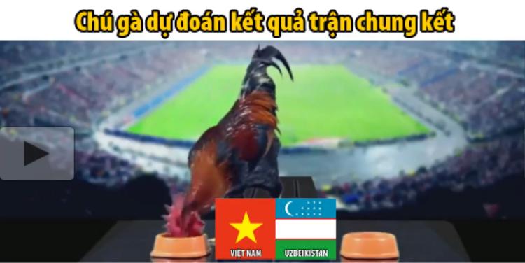 Ngay sau khi nhìn thấy 2 khay thức ăn, chú gà trống liền chọn khay thức ăn bên phía cờ đỏ sao vàng của Việt Nam.