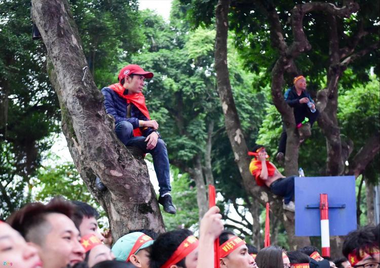 Để có một vị trí xem thích hợp, một số cổ động viên còn trèo lên cây ngồi để nhìn cho rõ.
