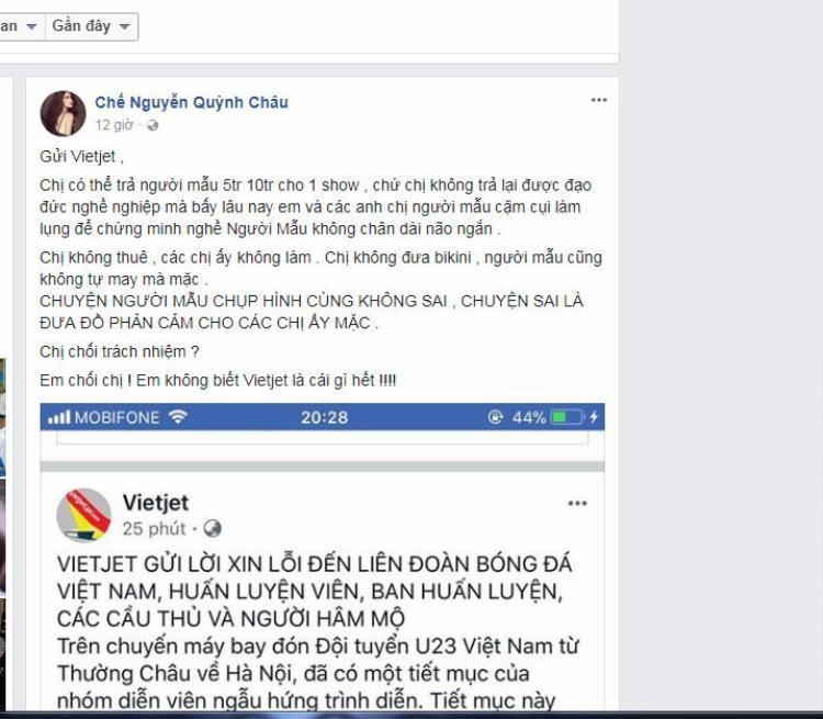 Người mẫu Quỳnh Châu chỉ trích và ngầm đổ lỗi cho hãng hàng không VietJet Air. Chân dài khẳng định dàn người mẫu chụp hình không sai.