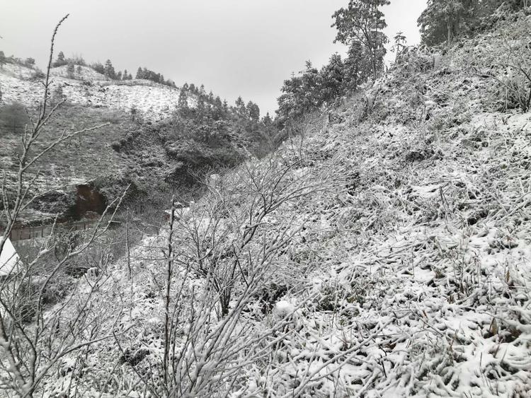 Khoảng 8h sáng nay, tuyết bắt đầu rơi ở khu vực thác Bạc, đèo Ô Quy Hồ.