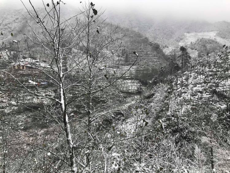 Tuyết rơi liên tục, đến 10h sáng đã phủ một lớp dày 2-3cm xuống mặt đất, mái nhà và có dấu hiệu lan rộng xuống thị trấn Sa Pa.