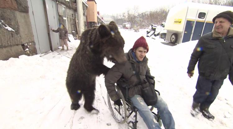 """Hình ảnh chú gấu Yasha đẩy xe lăn cho Ogly dưới nền tuyết trắng xóa đã """"đốn tim"""" cư dân mạng."""