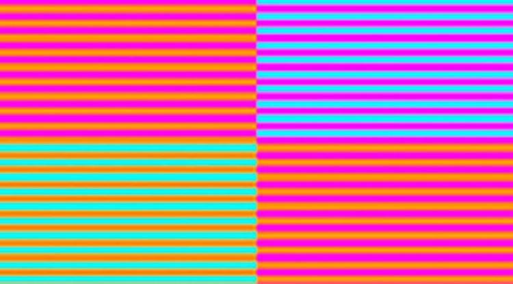 Những hình ảnh 'nhức não' khiến bạn không thể rời mắt