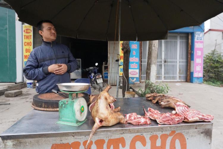Những người yêu thích chó thì khuyên không nên ăn thịt loài vật gần gũi với con người này.
