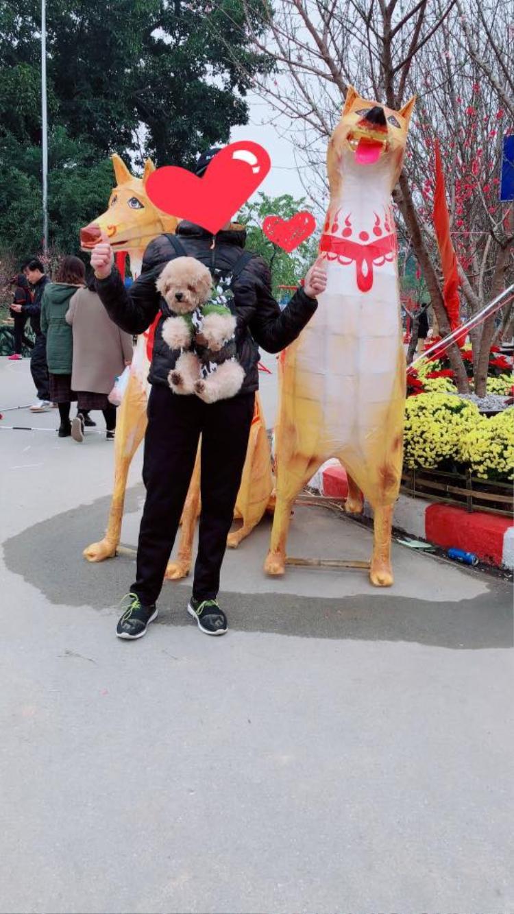 Mô hình chó ở Lạng Sơn.