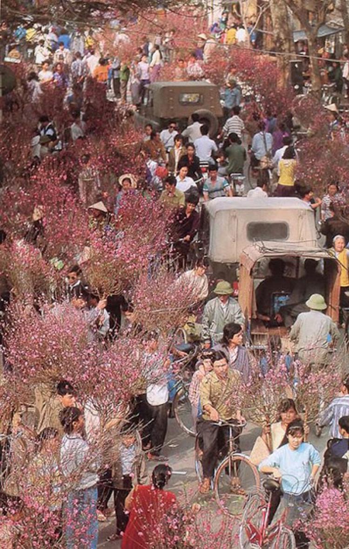 Sắc hoa đào ngập tràn trong phiên chợ Tết.