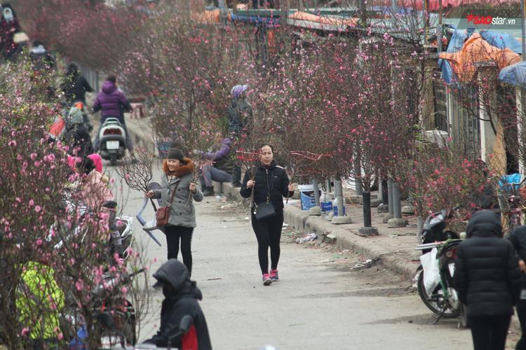 Nhiều người tranh thủ ghé thăm chợ hoa để tìm kiếm không khí Tết.