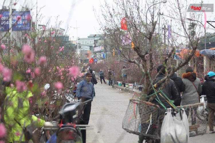 Ghé thăm chợ hoa, mua về 1 cành đào nhỏ là không khí Tết đã tràn ngập gia đình.