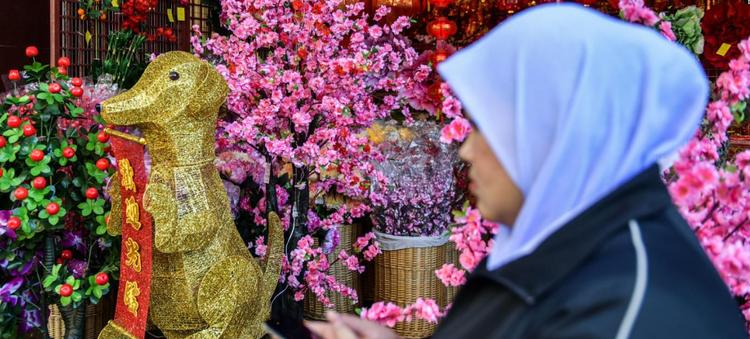 Dù ở Malaysia, người Hoa chỉ chiếm 1/4 dân số nhưng không khí Tết Nguyên đán vẫn rộn ràng, náo nhiệt tại quốc gia này.