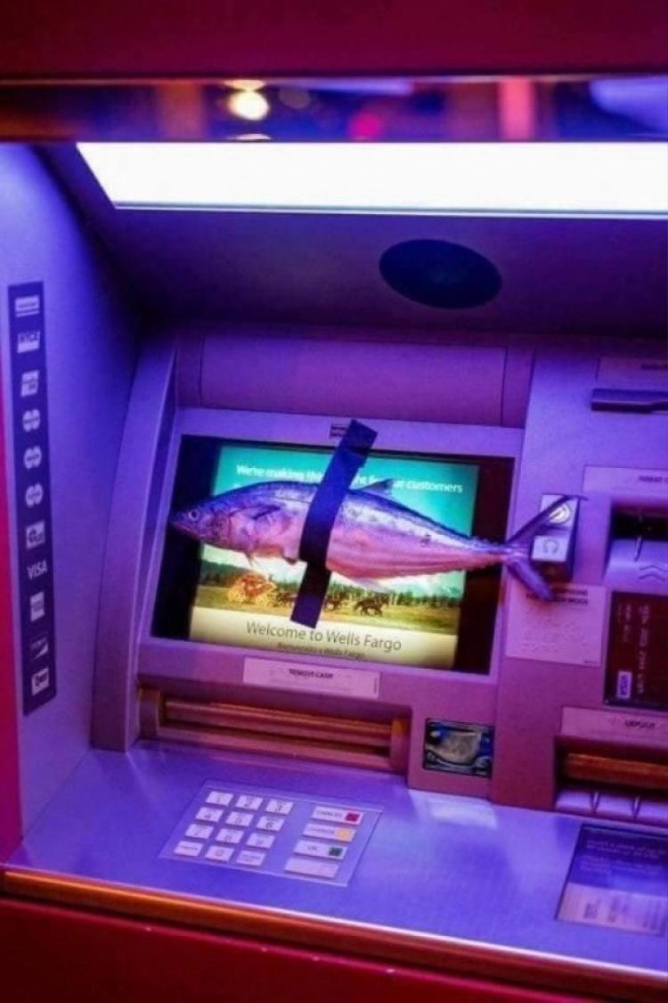 Liệu cái cây ATM này có rút được ra cá không nhỉ?