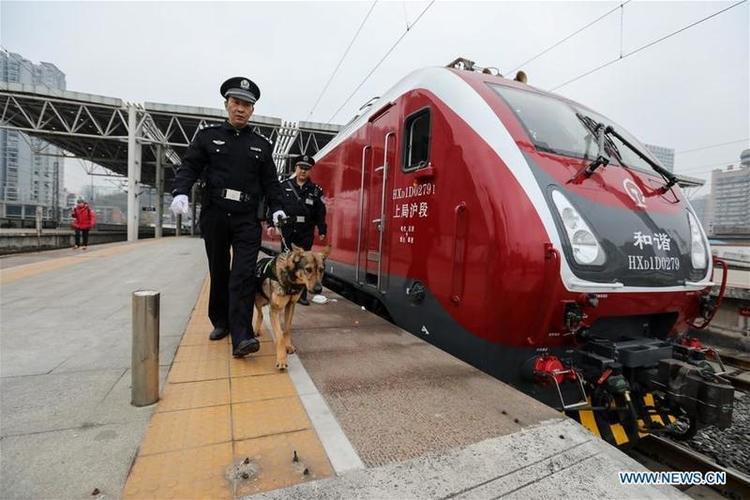 Tuy là ngày đầu tiên của năm mới nhưng chó cảnh sát đã bộn bề với công việc.