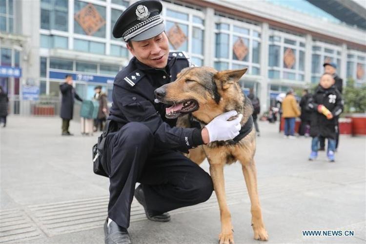 Đồng nghiệp luôn sát cánh bên Long Ya là cảnh sát Ren Wei.