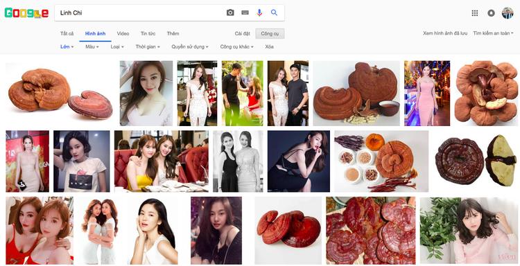 Đến cả Google cũng phải bó tay trước nghệ danh của loạt sao Việt này!