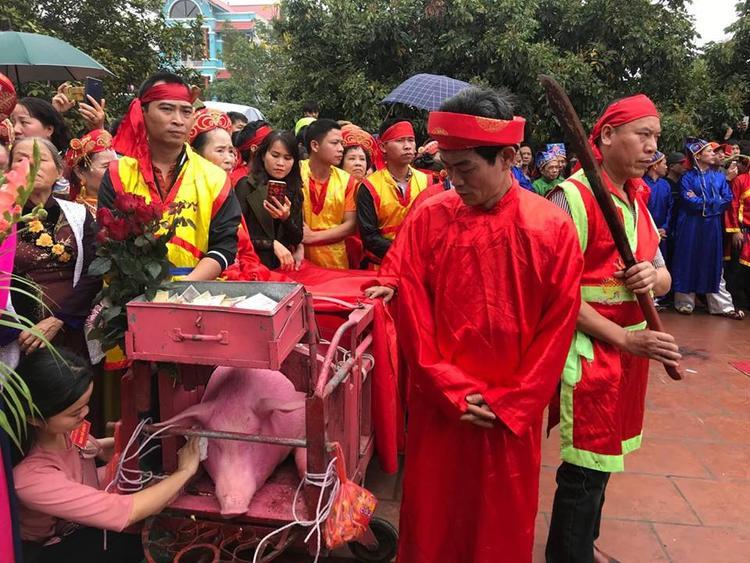 """Sáng 21/2, người dân làng Ném Thượng đi rước hai """"ông ỉn"""" đi vòng quanh làng trước khi mang đi """"trảm kín""""."""