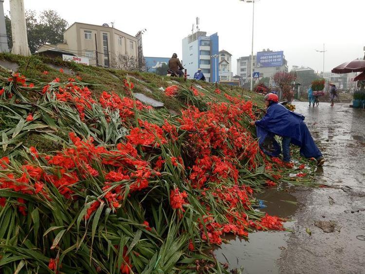 Thấy hoa bị đổ bỏ chất thành đống, nhiều người dân đi đường xót của, đội mưa xuống nhặt hoa về cắm.
