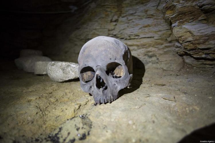 Hộp sọ được tìm thấy bên trong một quan tài Pharaoh. Ảnh: Middleeastmonitor
