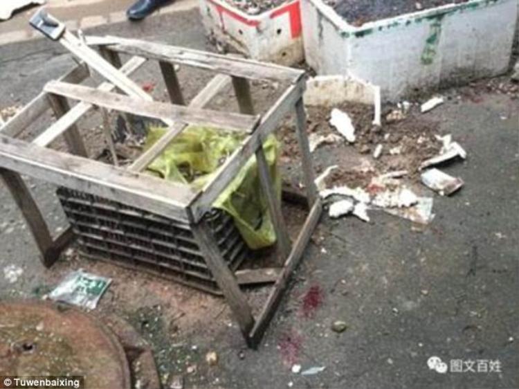 Nơi cậu bé 4 tuổi rơi xuống từ cửa sổ khách sạn.