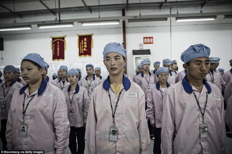 Từ lâu các nhà máy đối tác của Apple tại Trung Quốc đã phải đối mặt với nhiều cáo buộc liên quan đến việc môi trường làm việc quá sức, độc hại trong khi thù lao thấp.