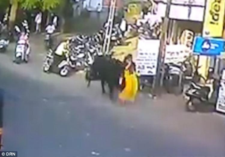 Con bò hung dữ nhấc bổng người phụ nữ trong tích tắc. Ảnh: DRN