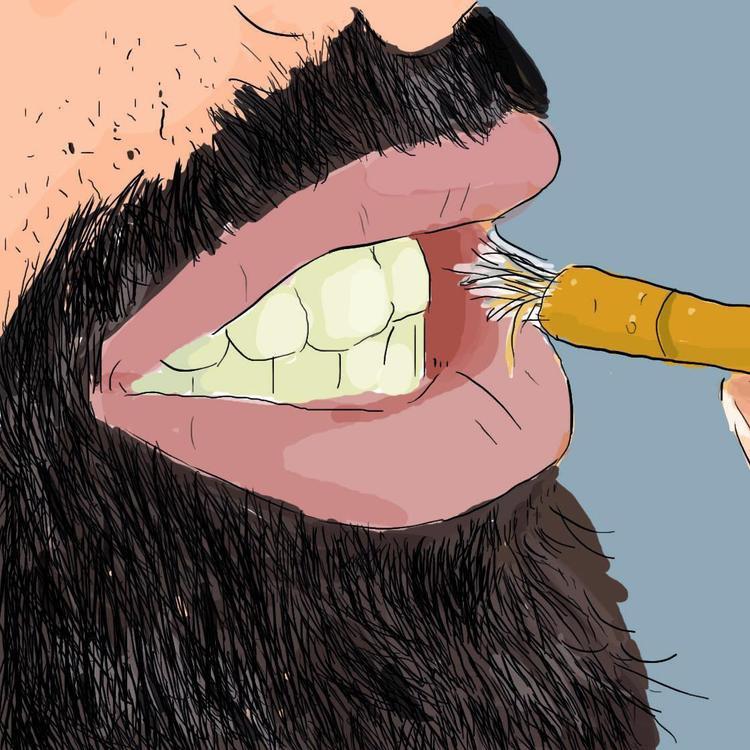 Cây gỗ nhai chính là tổ tiên của bàn chải đánh răng. Ảnh sưu tầm
