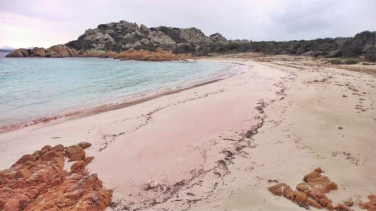 Ông chưa từng cảm thấy cô đơn mà ngược lại ông rất thích hưởng thụ vẻ đẹp của hòn đảo một mình.