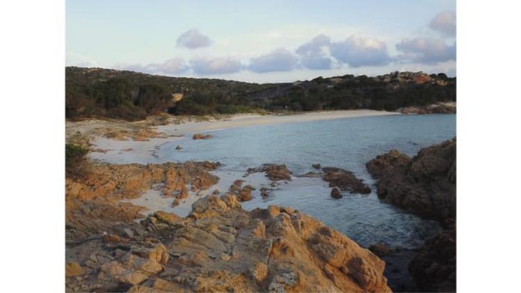 Số phận đã sắp đặt nên ông Morandi đã nhanh chóng trở thành người chăm sóc cho hòn đảo này.