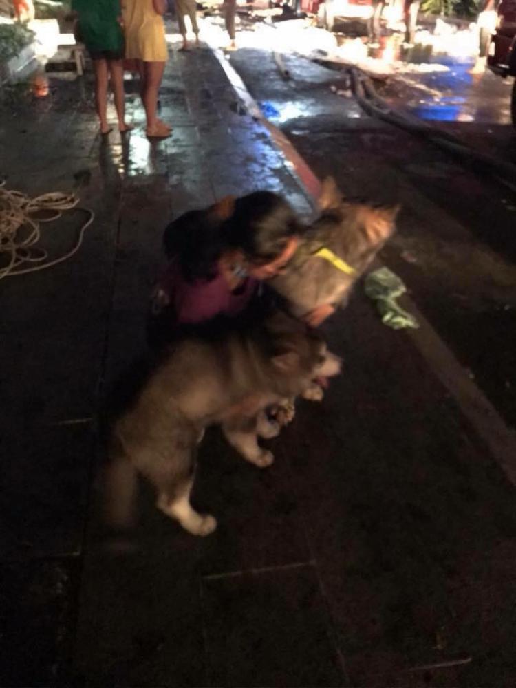 Khoảng khắc lúc hai mẹ con bé Ka xuống đất an toàn
