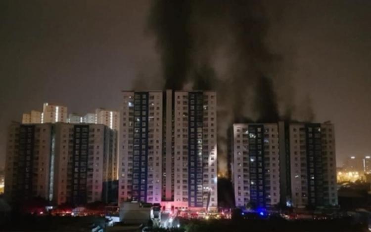 Vụ cháy tại chung cư cao cấp Carina Plaza đã khiến 13 người tử vong, 28 người bị thương.