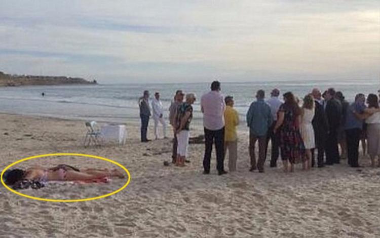 Cô ái thản nhiên nằm phơi nắng mặc cho đám cưới đang được tổ chức ngay bên cạnh.