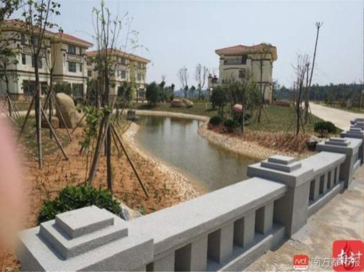 """Khu biệt thự còn được """"trang bị"""" thêm ao hồ. Ảnh: 南房都市报"""