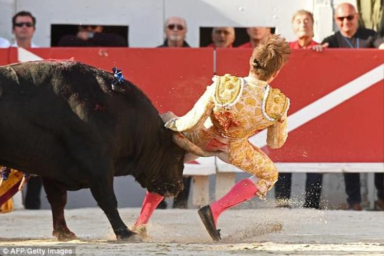 Andy Younes, một đấu sĩ bị bò tót tấn công hiểm hóc tại một cuộc đấu bò tót được tổ chức ở thành phố Arles, miền nam nước Pháp. Ảnh AFP