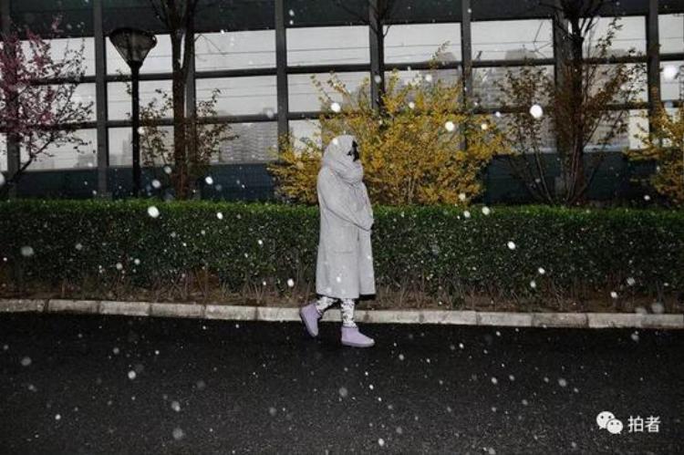 Năm nay, Tết Thanh minh của người Trung Quốc rơi vào ngày 5/4 nên tuyết rơi cũng ảnh hưởng ít nhiều tới việc nghỉ lễ của người dân.