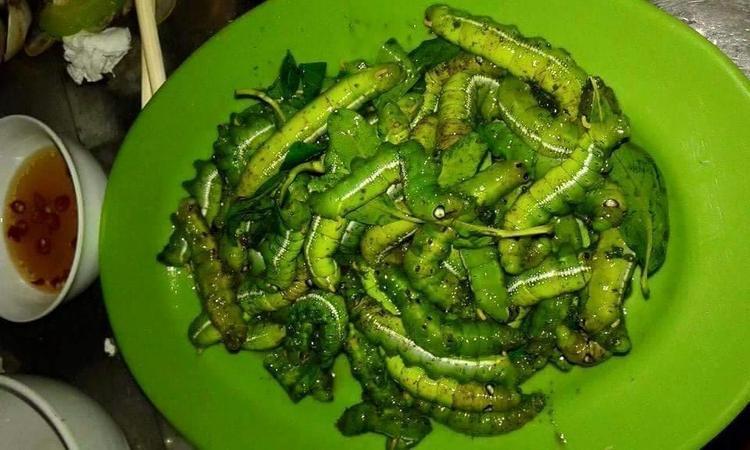 Những món ăn kinh hãi từ sâu bọ ở Việt Nam khiến thực khách giật mình